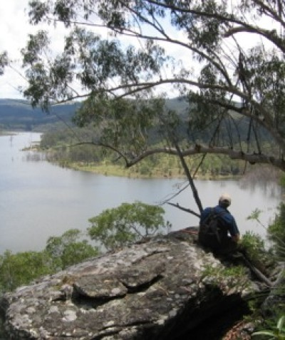 Ecological monitoring of threatened species, EECs, vertebrate pests and phytophthora root rot at Shannon Creek Dam via Grafton