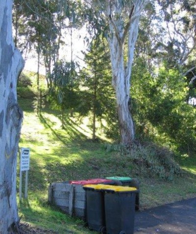 Arborist tree impact assessment report for senior's home development in Koala habitat, Goonellabah via Lismore