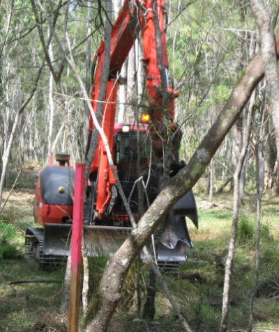 Fauna spotter catcher works for construction of the endangered coastal Emu population fence, Tyndale via Grafton