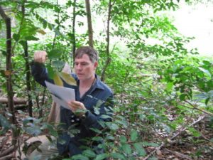 vegetation survey assessment Ballina
