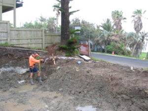 arborist tree development Lennox 300x225 Arborist Reports and Plans for Development