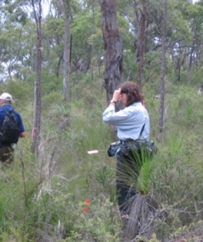 Ecological survey monitoring and targeted searches for threatened flora and fauna at Shannon Creek Dam via Grafton