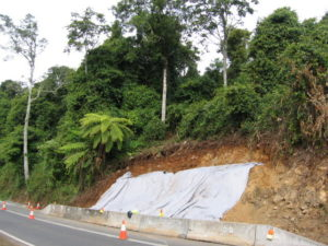 ecologist assessment landslip rainforest 300x225 Environmental Impact Assessments